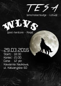Tesa i WLVS w Krakowie