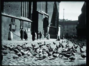 Gołębie na placu Mariackim-autor fot. nieznany lata 20. XX w. wł. MHK