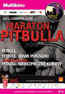 2016-11_maraton_pitbulla_825