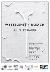 Plakat wystawa Anita Owsianna