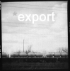 EXPORT LABEL